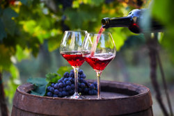 Why not enjoy a glass of wine?