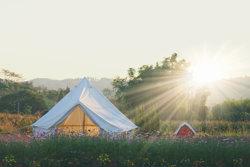 Yurt glamping