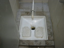 French Style Toilet